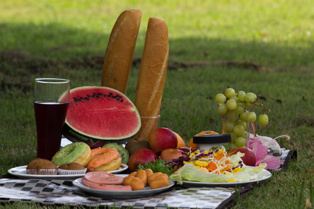 Outdoor picnic basket with bread, cheese and grape and wine bottles on lawn  photo