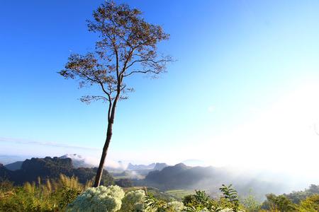 loei: View area Phu PA Po mountain at Loei, Thailand Stock Photo