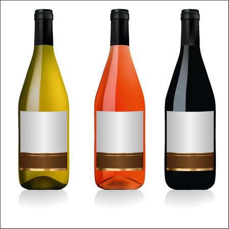 white riesling grape: Set of white, rose, and red wine bottles with labels isolated on white background Illustration