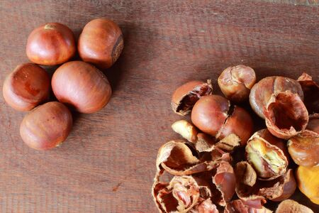 Full grain chestnut seed and it is selected  photo