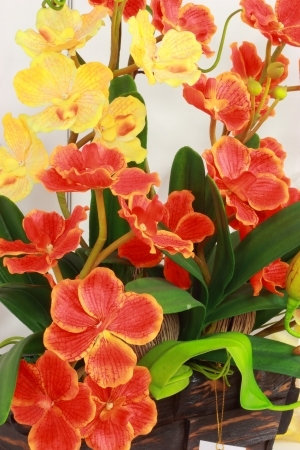 Artificial orchid, orange, yellow  Stock Photo