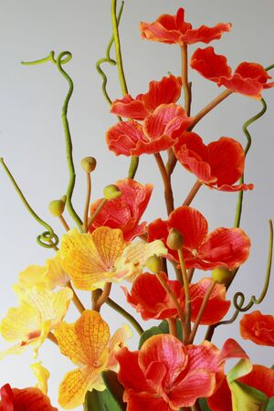 Artificial orchid, orange, yellow  photo