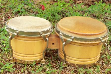 bongos: Bongo Bongo laid to grass green