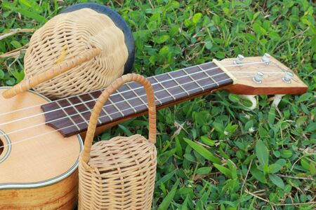 Ukulele with percussion  photo