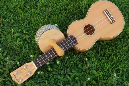 Ukulele and Cabasa photo