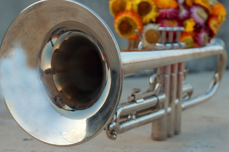Silver Trumpet with paper flowers  photo
