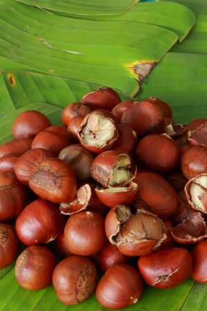 Chestnut seed on banana leaves  photo