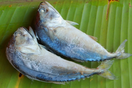 Mackerel on green banana leaves  photo