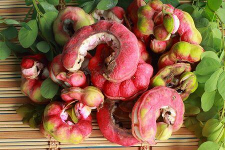 Manila tamarind