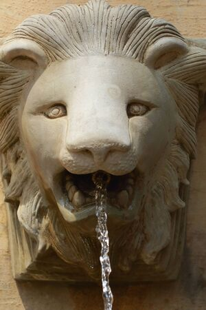 spitting: Lion statue spitting water