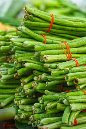 long beans in market Stock Photo - 23766050