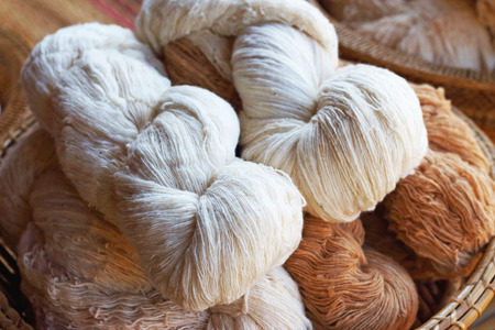 silkworm: Hand made of raw silk