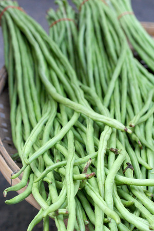 long bean in the market photo