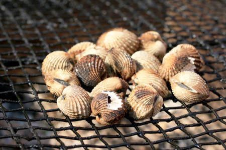 cockles: cockles on the grill. Stock Photo