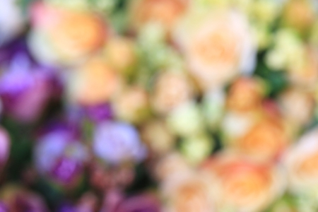 blurred beautiful vintage roses of artificial flowers