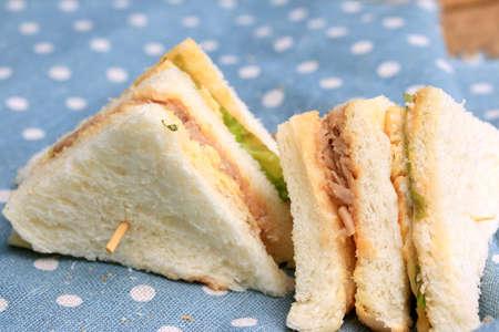 sanwich: tuna sanwich