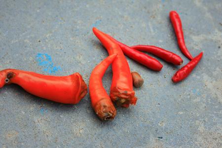 rotten: rotten pepper