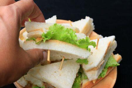 sanwich: tuna sanwich on black background