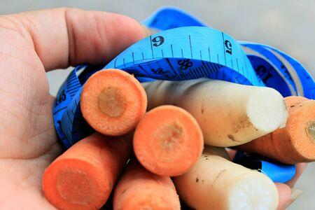 radishes: Fresh carrots and radishes