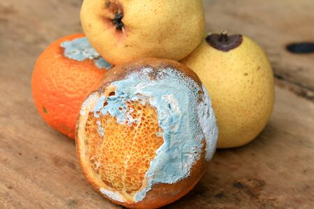 infect: rotten pear and orange fruit on wood vintage Stock Photo