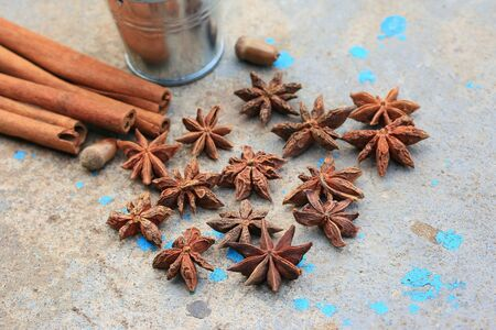 indian sweet: star anise and cinnamon Stock Photo