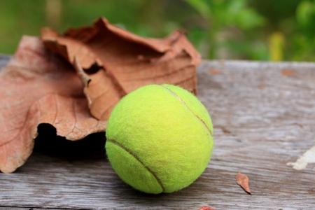 tennis ball Archivio Fotografico