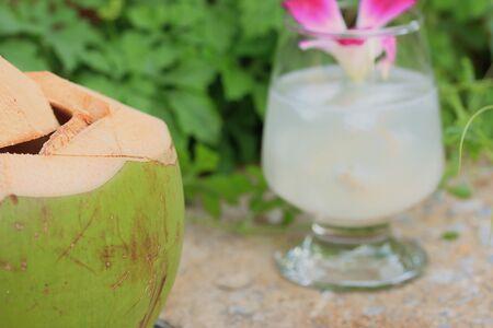 coconut drink: coconut drink Stock Photo