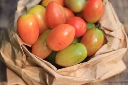 measuring cup: fresh tomatoes
