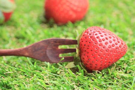 chaff: fresh strawberry