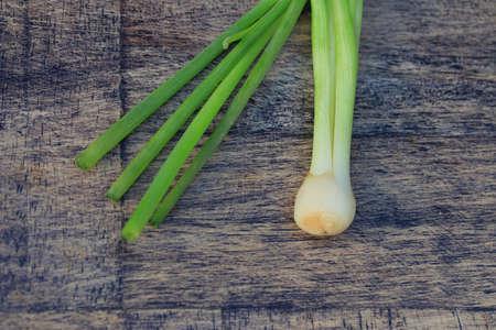 onions: Fresh spring onions Stock Photo