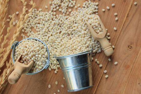 wheat kernel: Barley seeds