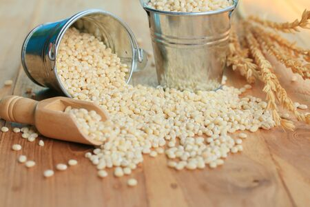 barley seeds: Barley seeds