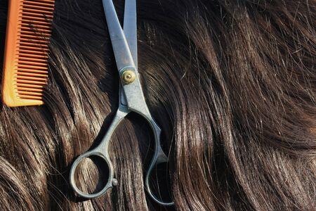 barber scissors: Barber scissors