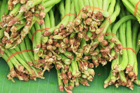 green bean: Long bean at the market