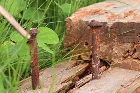 old rust tacks