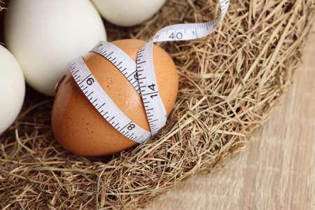 duck egg: eggs in the nest
