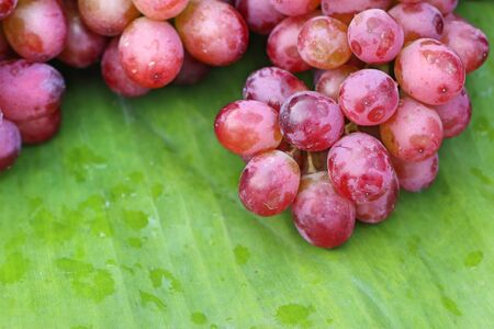grape at street food Stock Photo