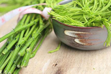 Acacia pennata green vegetable Stock Photo