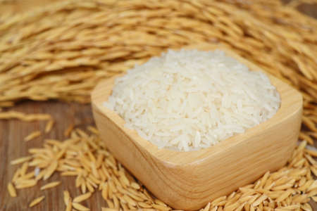 Paddy and white rice