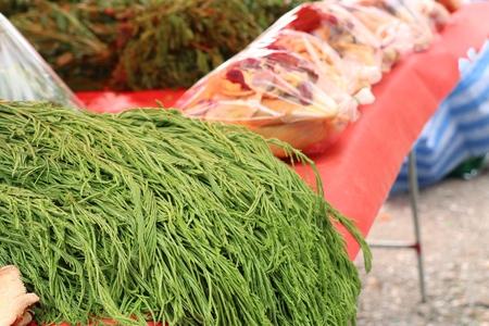 Acacia pennata at market Reklamní fotografie