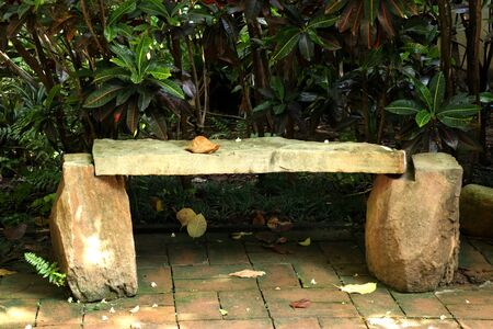 Old bench in the park Stock Photo