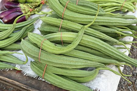 fresh luffa in the market