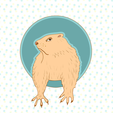 somnolent: Sleepy Groundhog Marmot comes out of its hole. Vector illustration for Groundhog day 2 february. Vector sketch for greeting card of groundhog day.
