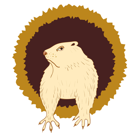 slumberous: Sleepy Groundhog Marmot comes out of its hole. Vector illustration for Groundhog day 2 february. Vector sketch for greeting card of groundhog day.