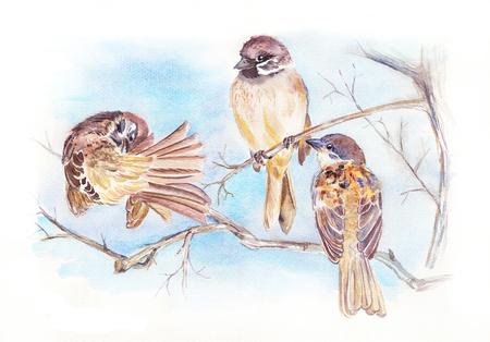 Blauer Himmel. Spatz reinigt Federn. Verschiedene Winkel des Zwitscherns kleiner Vögel. Aquarell Frühlingslandschaft mit Vögeln