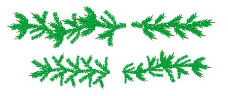 Four Fir branches without decorations. Detailed set of Coniferous christmas garland. Realistic tree for New Year design. Vector Pine needles to create your holiday bouquet