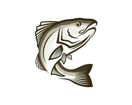 Sable fish vector illustration.