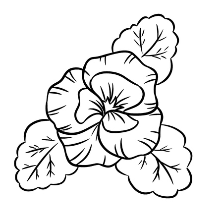 Vector black contour of pansy flowers. Isolated vector template. Web icon