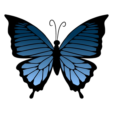 Blue butterfly icon. Isolated vector template. Web illustration