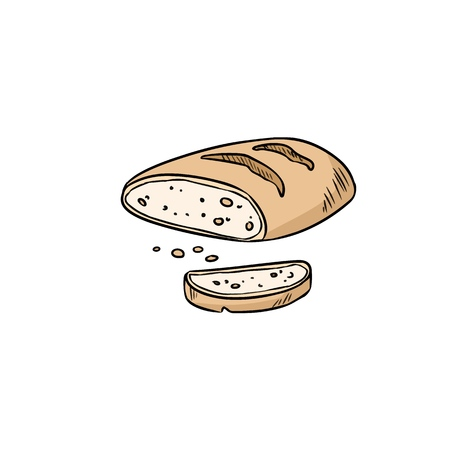 Hand drawn bread doodle. Organic ecological food vector image